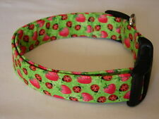 Charming Green with Red Strawberries & Ladybugs Dog Collar