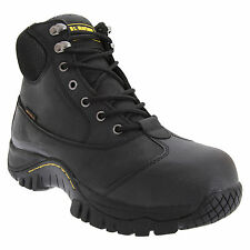 Dr Martens FS206 Lace-Up Shoe / Womens Shoes / Safety Shoes