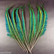 10 pcs beautiful peacock feathers 12-14 inches , crafts bouquet millinery