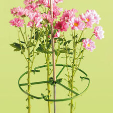 10  INCH ( 25 cm )  PLANT / FOWER SUPPORT RINGS FOR USE WITH BAMBOO CANES
