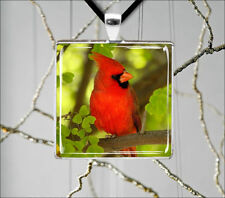 BIRD RED CARDINAL MALE IN GREEN TREE SQUARE PENDANT NECKLACE  -cht6Z
