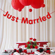 300cm Just Married Flags Garland Bunting Banner Wedding Party Decorations
