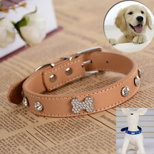 Fashion Leather Studded Collar New Rhinestones Bone Charm Small Pet Dog Supplies