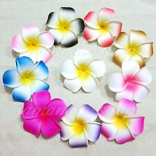 Lot of 12/60/120/Foam Floating Frangipani Plumeria Hawaiian Flower Head Pond New