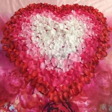 100pcs 5x5cm Silk Rose Flowers Petals for Wedding Party Table Confetti DIY OK02
