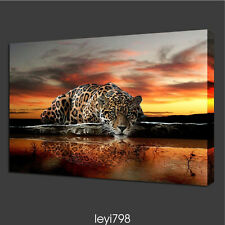 """HD Print on Canvas Painting Home Decoration Wall Art animal Leopard """"20x32in"""""""
