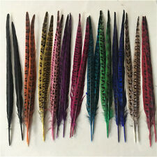 "10-100pcs beautiful natural ""male"" pheasant tail feathers 12-14 inches/30-35 cm"
