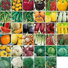 Vegetable spice herb seeds 35 varieties Tomato Pepper Cucumber Courgettes and ++