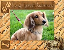DACHSHUND (LONGHAIRED) ENGRAVED ALDERWOOD PICTURE FRAME #0112 In four sizes