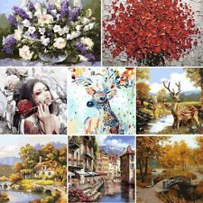 DIY Digital Hand-painted Art Oil Painting Abstract Wall Decor on Canvas 40*50CM