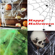 Stretchy Spider Web Cobweb With 2 Spiders Halloween Party Props Decoration New
