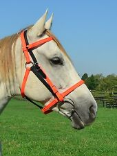 ANY 2 COLORS MIX n MATCH Quick Change HALTER BRIDLE Headstall Beta Biothane