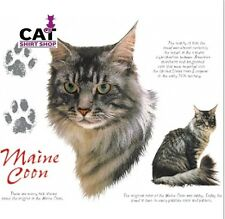 cats Maine coon breed | eBay