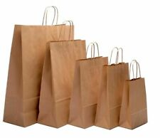 Brown Twist Handle Paper Party and Gift Carrier Bag / Bags With Twisted Handles