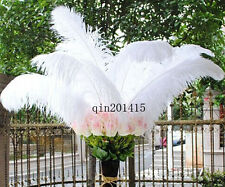 Super feather 20-200pcs white natural ostrich feathers 26-28inch / 65-70cm
