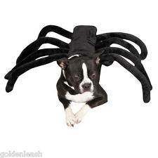GRR-ANTULA Spider Dog Halloween Costume, ALL SIZES Zack & Zoey