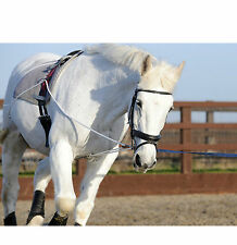 Horse Training Aid System Lunging Equipment Pony Cob Full Size Lunge Device