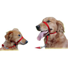 For Pet Safe Dog Quick Release Gentle Leader Head Collar Halter Training Nose