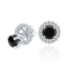 2 Carat Black Diamond Solitaire Stud Pair Earrings Halo Jackets 14K White Gold