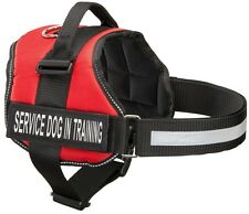 Service Dog in Training Harness & Vest with Service Dog and in Training Patches