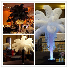 Beautiful! 10-100pcs (white / black) natural ostrich feathers 12-24 inch/30-60cm