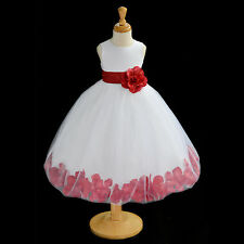 NEW FREE SHIPPING FLOWER GIRL DRESS PAGEANT BIRTHDAY HOLIDAY CHRISTMAS RECITAL