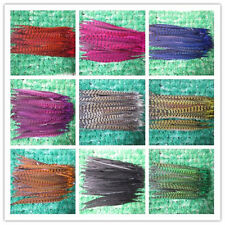 Wholesale! beautiful pheasant tail feathers 12-14 inches/30-35 cm feathers