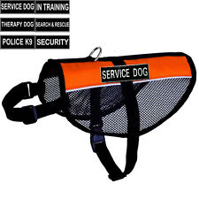 Reflective Soft Mesh Dog Puppy IN TRAINING SERVICE dog Harness free label Patch