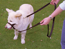 COA Halti 2 Metre Double Ended Adjustable Dog Training Lead Small or Large