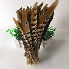 Wholesale 10-200pcs Scarce natural pheasant feather 30-35cm/12-14inch Decorative