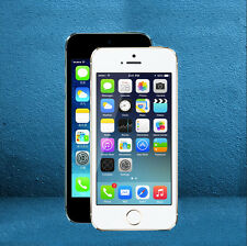 LCD Touch Screen Display iPhone 5S Series With Touchscreen Assembly Replacement