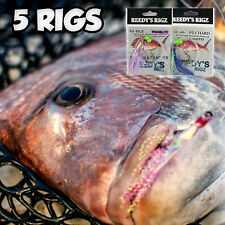 5x Snapper Rig fishing Rigs Flasher Circle Hook Paternoster Rigs Jig  Baits