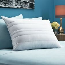 Pacific Coast Down Channel Feather White Down 2-pk pack Pillow 550 Fill Power
