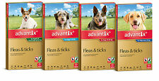 Advantix for Dogs Flea and Tick Treatment for Dogs All Sizes Tick Repellent