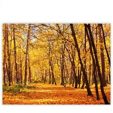 "Brands Canvas picture ""Autumn Forest"" Classic 4:3 Autumn leaves Forest Trees B"