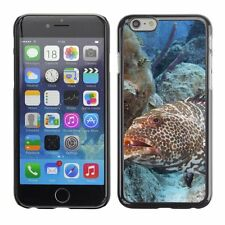 Hard Phone Case Cover Skin For Apple iPhone Grouper Fish