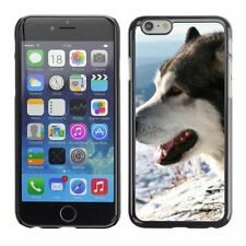 Hard Phone Case Cover Skin For Apple iPhone Husky dog in frosty winter
