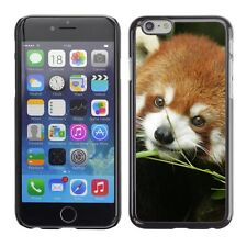 Hard Phone Case Cover Skin For Apple iPhone Fluffy red panda cub