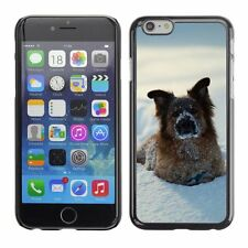 Hard Phone Case Cover Skin For Apple iPhone Playful dog buried in sn