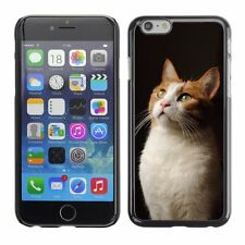 Hard Phone Case Cover Skin For Apple iPhone Cat looking up at light