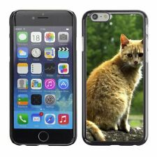 Hard Phone Case Cover Skin For Apple iPhone Red street cat seating