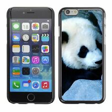 Hard Phone Case Cover Skin For Apple iPhone Charming little bear pan