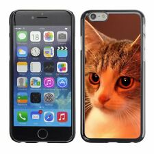 Hard Phone Case Cover Skin For Apple iPhone Charming home kitten