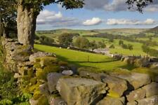 Farm Near Burnsall, Yorkshire Dales National Park, Yorkshire, England, United