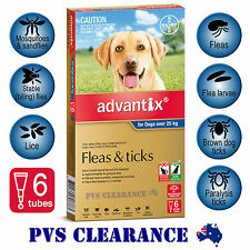Advantix Blue 6 for Extra Large Dogs 25 kg and over - 6 Pack Flea & Tick, Lice
