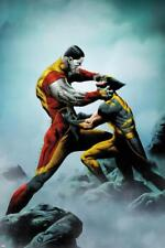 Wolverine No.4 Cover: Wolverine and Colossus Fighting Poster by Lee, Jae Wall