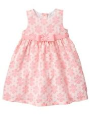 NWT Gymboree Family Brunch Pink Lace Dress Baby Toddler Girls Easter SZ0-3/18-24