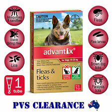 Advantix Red Single for Large Dogs 10 - 25 kg - 1-Pack - Flea & Tick, Mosquitoes