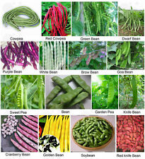 Vegetable seeds - cowpea Garden goa pea knife Soy bean Browbean Non-GMO Heirloom