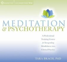 Meditation and Psychotherapy : A Professional Training Course for Integrating Mi